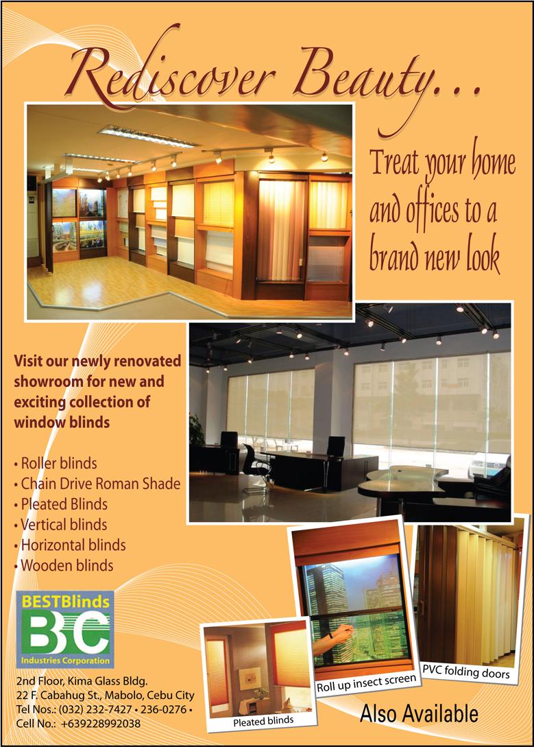 Best Blinds Cebu Design Roller